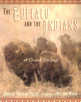 Image for Buffalo and the Indians : A Shared Destiny