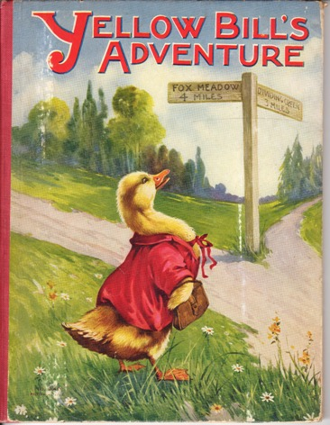 Image for Yellow Bill's Adventure
