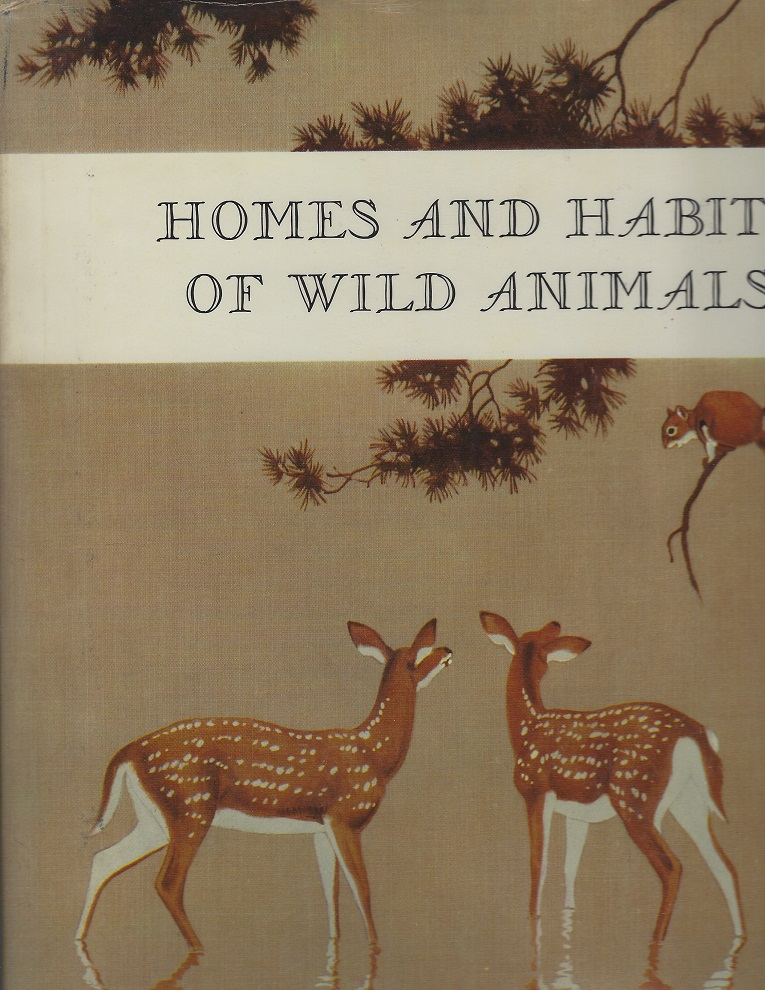 Image for Homes and Habits of Wild Animals; North American Mammals