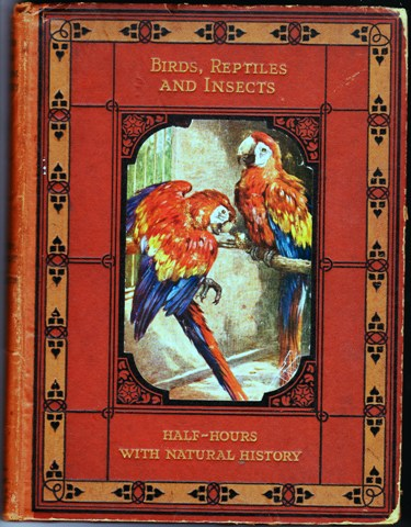 Image for Half Hours With Natural History in Two Parts:  Birds, Reptiles & Insects