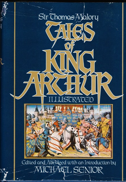 Image for Tales of King Arthur