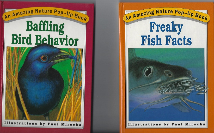 Image for Awesome Animal Actions; Baffling Bird Behavior; Freaky Fish Facts; Incredible Insect Instincts (Amazing Nature Pop-Up Books