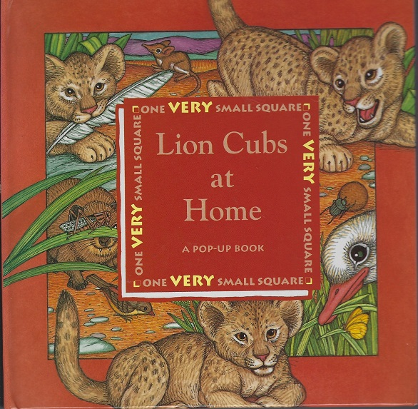 Image for Lion Cubs at Home, A Pop-Up Book (One Very Small Square)