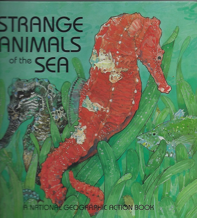 Image for Strange Animals of the Sea:  A National Geographic Action Book