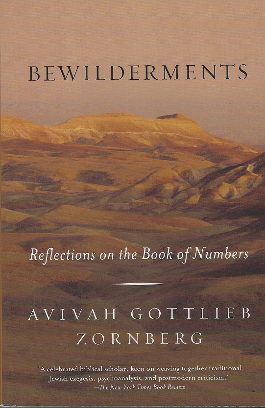 Image for Bewilderments, Reflections on the Book of Numbers