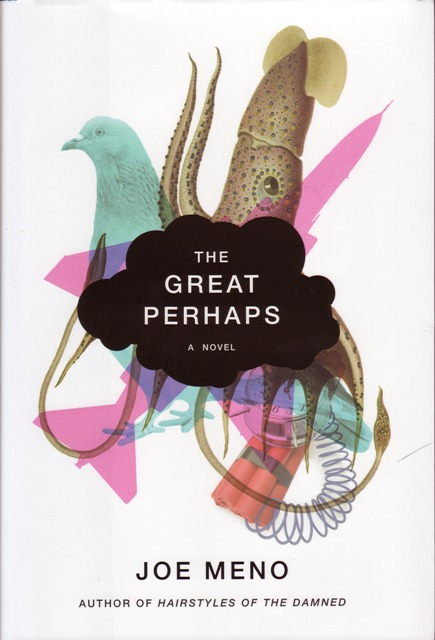 Image for The Great Perhaps: A Novel