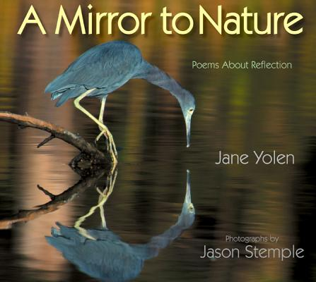 Image for Mirror to Nature