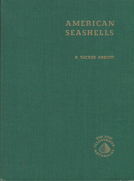Image for American Seashells