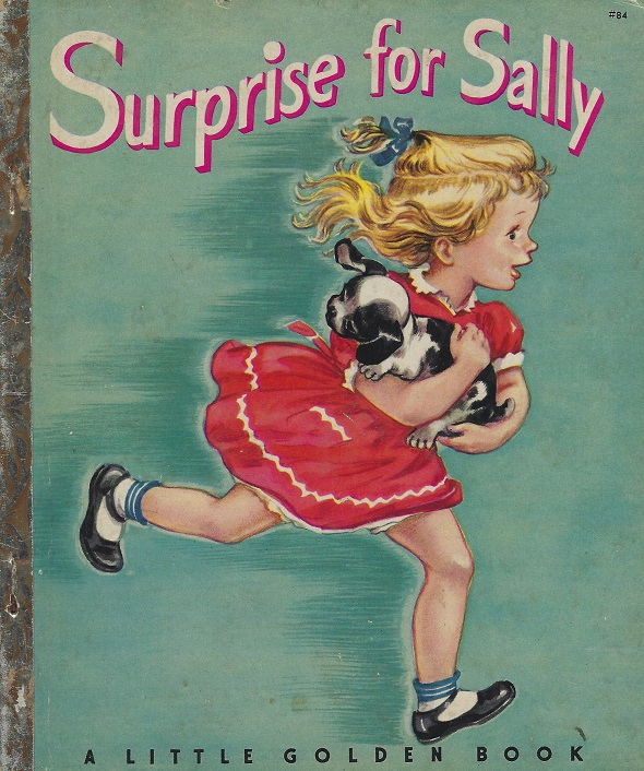 Image for Surprise For Sally And Other Stories